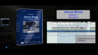 Internal Mixing: Module 7 - Automation