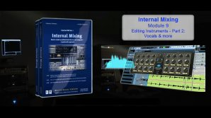 Internal Mixing: Module 9 - Bass & Vocals